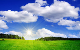 Sunshine  and green meadow. Royalty Free Stock Photo