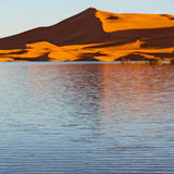 sunshine in the lake yellow  desert of morocco sand and     dune Stock Image
