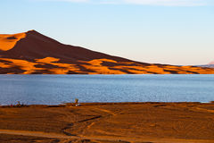 sunshine in the lake yellow  desert of morocco sand and     dune Royalty Free Stock Photo