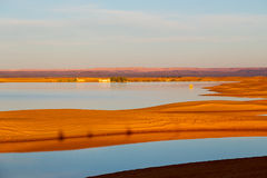 sunshine in the lake yellow dune Royalty Free Stock Images