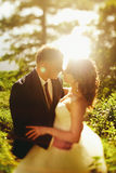 Sunshine makes a halo around newlyweds kissing somewhere on the. Nature a Stock Photo