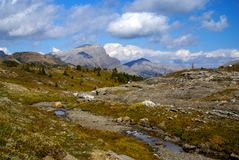 Sunshine Meadows, Banf National park Royalty Free Stock Photos