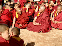 In the sunshine of monks Stock Photography