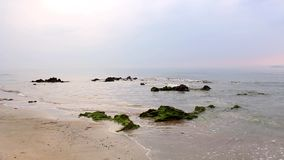 Sunshine in the morning with sea soft waves and rocks in the sea. With green moss over sand of the tropical beach stock footage