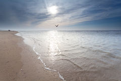 Sunshine over North sea coast Stock Image