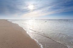 Sunshine over sand beach in North sea Stock Photo