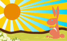 Sunshine rabit easter farm fence cartoon concept Royalty Free Stock Photo