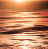 Sunshine sparkling sea waves Royalty Free Stock Image