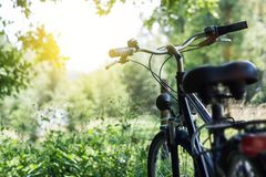 Sunshine and standing bicycle at nature Royalty Free Stock Images