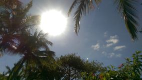 Sunshine. Sunny day at the beach in the Caribbean Stock Photography