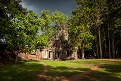 Sunshine on vegetation growing of the Angkor ruin Stock Photos