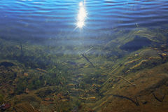 Sunshine in the water Royalty Free Stock Image