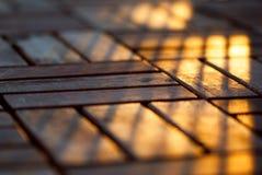 Sunshine on Wood Royalty Free Stock Images