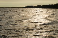 Sunshines in the sea. In the evening when the sun is falling Royalty Free Stock Photos