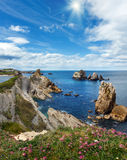 Sunshiny Arnia Beach coastline landscape. Sunshiny Arnia Beach (Spain) Atlantic Ocean coastline landscape with pink flowers in front Royalty Free Stock Image
