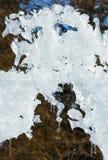 Sunshiny melting ice figure. The melting of the ice figure with icicles close-up Royalty Free Stock Photography