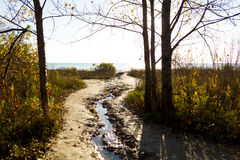 Sunsine Beachside Στοκ Εικόνες