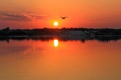 Sunsrise op de Zambezi rivier Royalty-vrije Stock Fotografie