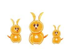 Sunt äta. Roliga små kaniner som göras av de orange skivorna. Royaltyfri Foto