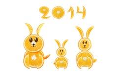 Sunt äta. Roliga små kaniner som göras av de orange skivorna w Royaltyfri Fotografi