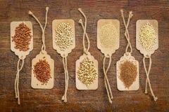 Sunt fritt kornabstrakt begrepp för gluten Royaltyfria Bilder