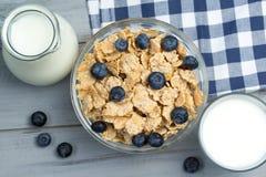 Sunt frukostbegrepp - bunken av sädesslag med nya blåbär, exponeringsglas och tillbringaren av mjölkar Royaltyfri Fotografi