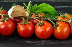 Sunt matbegrepp, nya grönsaker royaltyfri bild