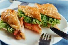 Sunt smörgåssnitt in i stycken som visar smaklig ingredienssalam Royaltyfri Fotografi