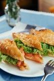 Sunt smörgåssnitt in i stycken som visar smaklig ingredienssalam Royaltyfria Bilder