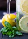 Sunt vatten med mintkaramellen, skivade citroner och gurkor Banta drinken Sassy vatten Murarekrus mycket med skivade frukter och  Arkivbild