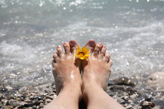 Suntanned female feet. In sea water Stock Photo