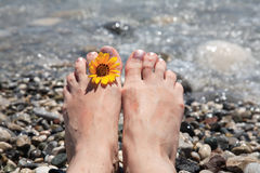 Suntanned female feet. In sea water Royalty Free Stock Photo