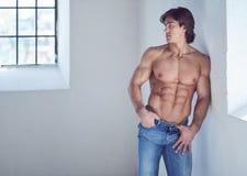 Suntanned muscular male in blue jeans posing. Suntanned muscular male in blue jeans posing in natural light from window Royalty Free Stock Image