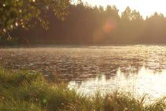 Sunup debajo del lago del bosque del pino de la madrugada Foto de archivo