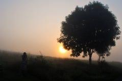 Sunup en la niebla fotos de archivo