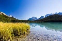 Sunwapta湖,贾斯珀国家公园在亚伯大,加拿大 库存图片