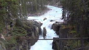 Sunwapta Falls, Канада акции видеоматериалы