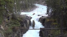 Sunwapta Falls, Canadá vídeos de arquivo