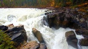 Sunwapta Falls in Canada Royalty Free Stock Photos