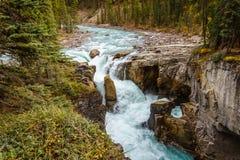 Sunwapta Falls en Jasper National Park Images libres de droits