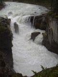 Sunwapta Falls Stock Image