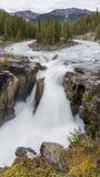 Sunwapta Falls - Jasper National Park Royalty Free Stock Image