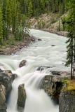 Sunwapta Falls - Jasper National Park Royalty Free Stock Photo