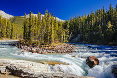 Sunwapta Falls, Jasper National Park in Alberta, Canada. The Sunwapta River is a major tributary of the Athabasca River in Jasper National Park in Alberta Royalty Free Stock Image