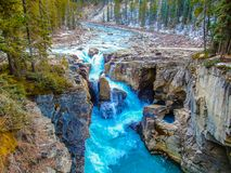 Sunwapta Falls Jasper National Park. Falls, water, rocks, canyon, fast moving Royalty Free Stock Photos