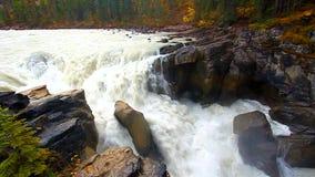 Sunwapta Falls in Kanada stock video