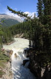 Sunwapta Falls Lookout Royalty Free Stock Image