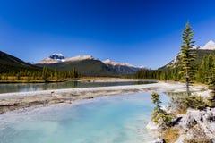 Sunwapta flod, Jasper National Park i Alberta, Kanada Royaltyfri Fotografi