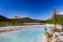 Sunwapta River, Jasper National Park in Alberta, Canada Royalty Free Stock Photography