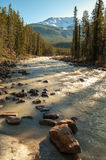 Sunwapta rzeka Obrazy Royalty Free